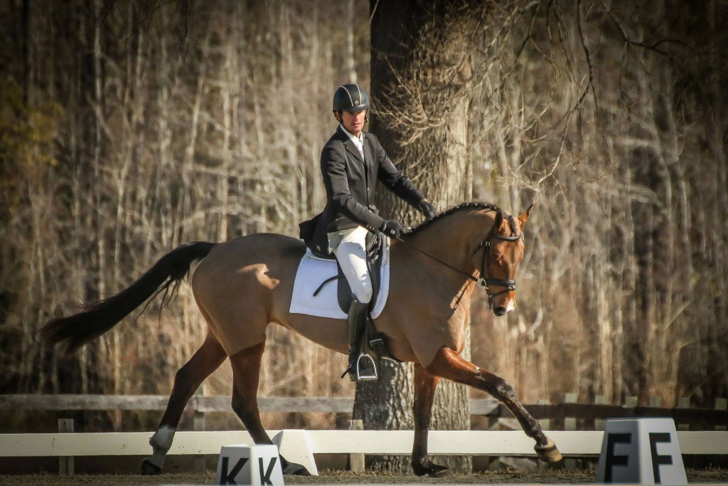 Ryan-Wood-Dressage-Great-SRG-Pic